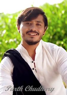 Parth Chaudhary imeg