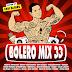 VA-Bolero Mix 33 - Mixed by Xavi Alfaro 2018