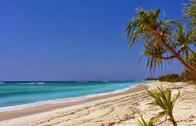 Destinasi Wisata Pantai Kupang