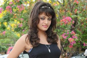Sneha Ullal Hot Hd Images In Yellow Dress 3 Pics
