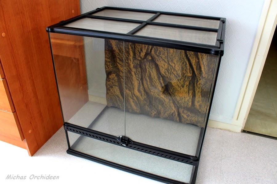 micha 39 s orchideen ein terrarium f r die etwas komplizierteren orchideen. Black Bedroom Furniture Sets. Home Design Ideas