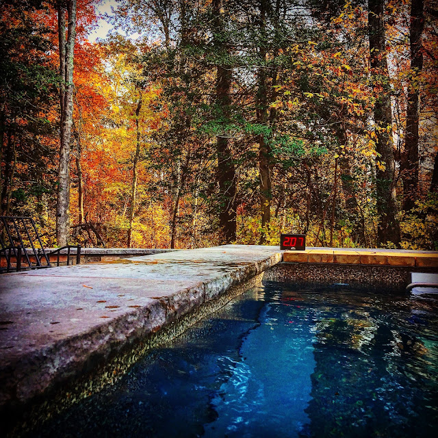 outdoor Original Endless Pool under the autumn leaves in Egg Harbor Township, New Jersey