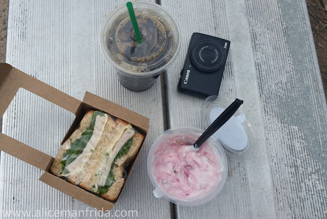 starbucks, lunch, sandwich, yogurt, coffee, iced coffee, camera, eating outdoors