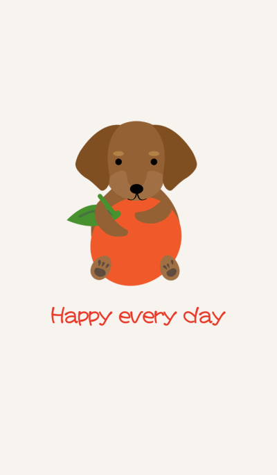Dachshund - orange orange