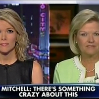 "Fox News' Megyn Kelly interviewed Cleta Mitchelle, attorney for Tea Party groups who were targeted by the IRS. Mitchell said ""There's something crazy about this."" Perhaps this blog post helps explain why the people driving the IRS cover-up are so ""snippy."""