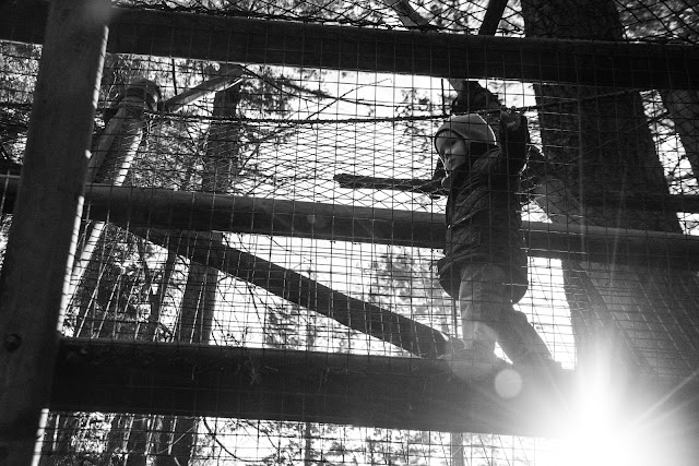 black and white photo of center parcs longleat