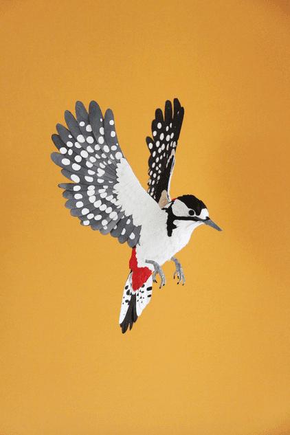 Esculturas de pájaros