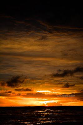 melihat sunset