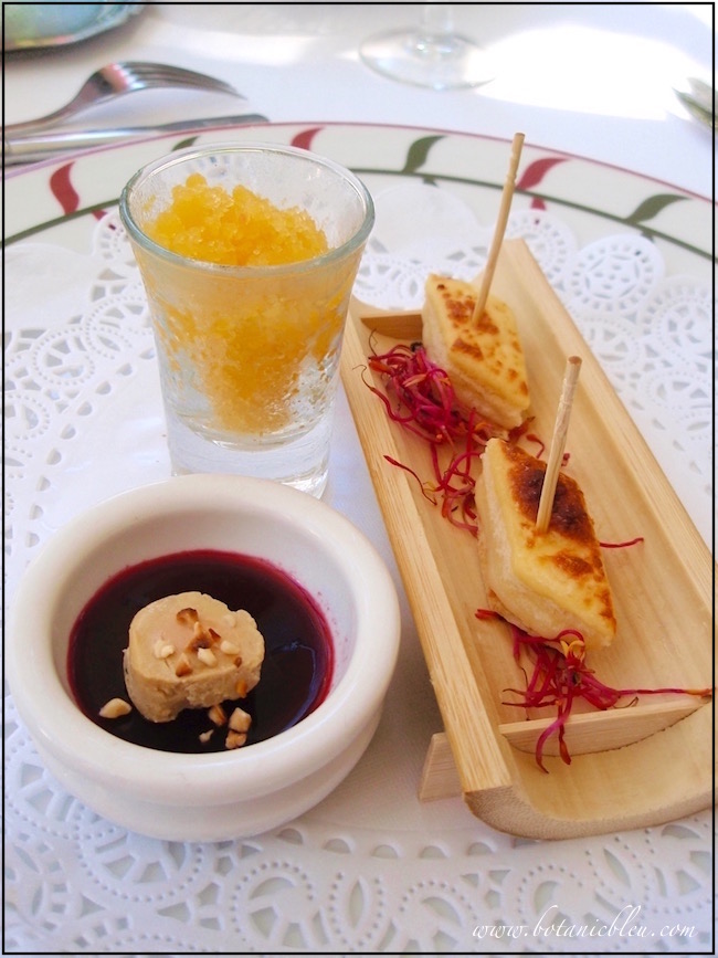 appetizer-citris-ice-cheese-pate
