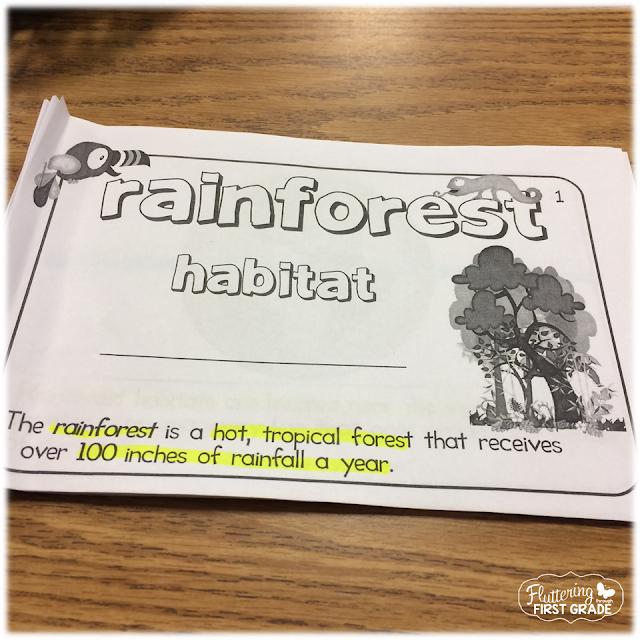 Rainforest habitats science unit