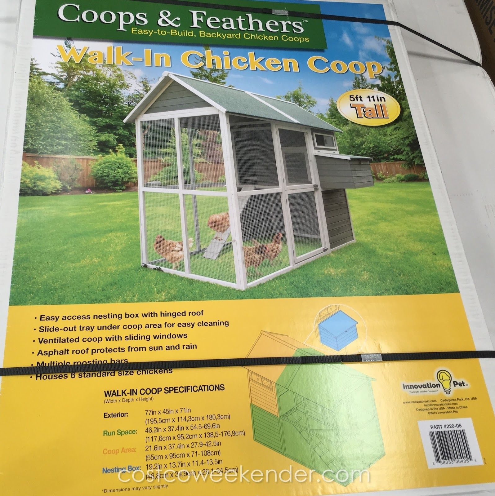 Coops Feathers Walk In Chicken Coop
