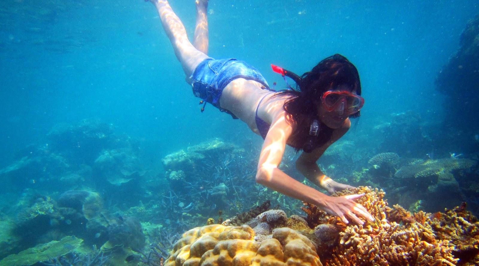 wisata alam indonesia yang wajib dikunjungi cantik dan manis di pulau karimun jawa