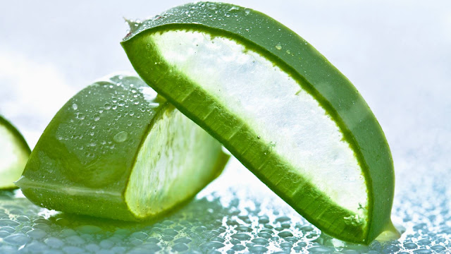 एलोवेरा के फायदे और नुकसान,Benefits and side effects of Aloe Vera in hindi
