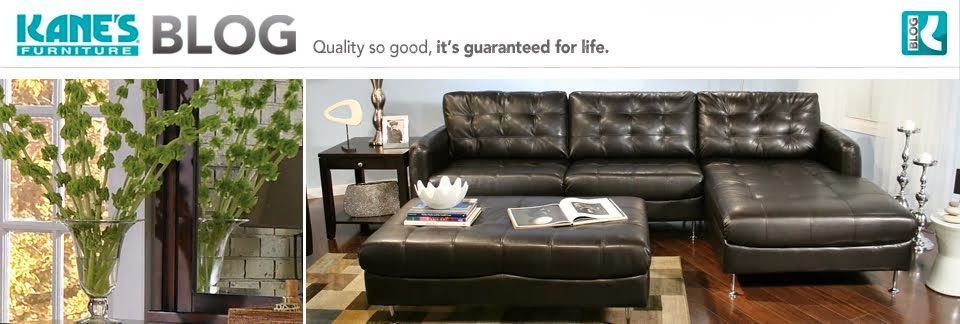 Remarkable Furniture Talk Kanes Furniture Stores Now Feature Brandy Evergreenethics Interior Chair Design Evergreenethicsorg