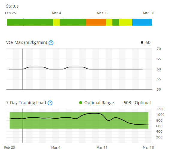 Stationary Waves: Comparing Garmin's Training Status And