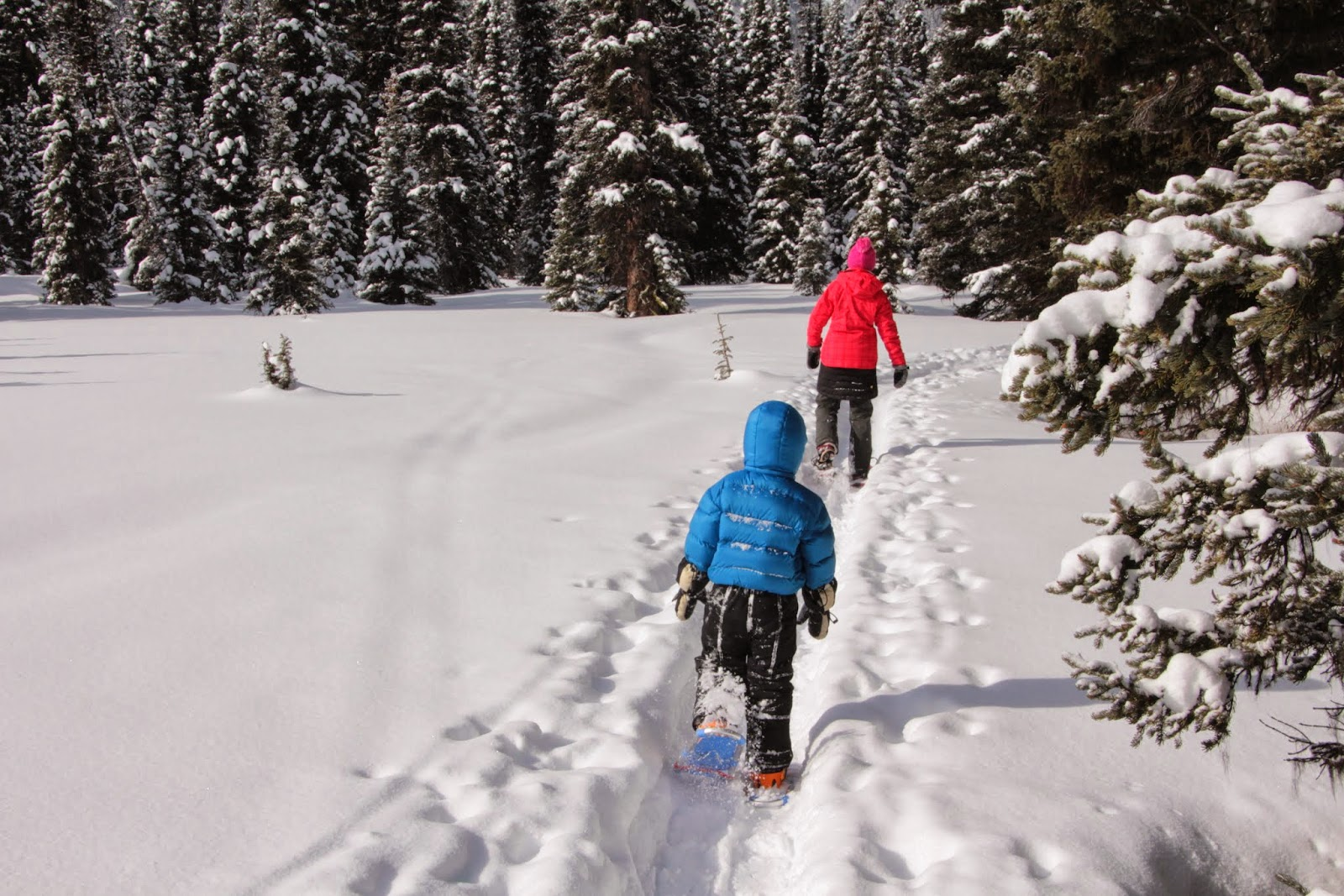 Family Adventures in the Canadian Rockies: Family ...