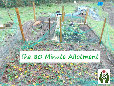 Grow your own in under two hours a week The 80 Minute allotment Green Fingered Blog