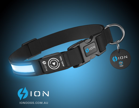 ion-led-dog-collar