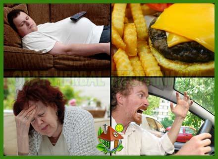 merokok, stress, obesitas, makanan kolestrol tinggi, makanan cepat saji