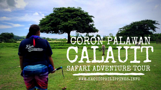 Calauit Safari Adventure 2015 Coron Palawan Exotic Philippines Travel Blog Blogger Busuanga