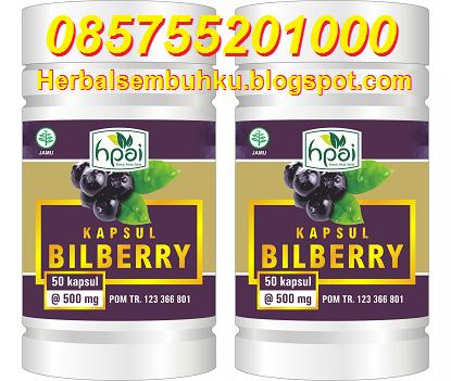 Bilberry, Penjual Kapsul Bilberry HPAI di Surabaya, Penjual Obat Herbal Mata katarak di Surabaya, Penjual Obat Mata katarak di surabaya, Obat Herbal mata Katarak, Jual Obat Mata katarak herbal di surabaya, tempat menjual obat mata katarak di surabaya
