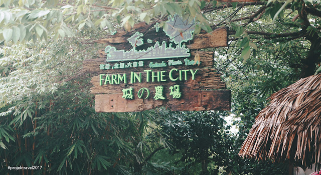 Farm In The City 城 の 农场