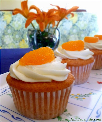 Orange Cream Cupcakes are light and fluffy orange and French vanilla cream flavored cakes frosted with a creamy orange frosting. | Recipe developed by www.BakingInATornado.com | #recipe #dessert