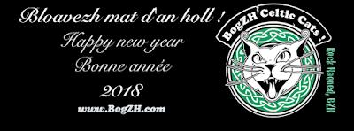 Bloavezh mat d'an holl ! ...   Happy new year !  Bonne année 2018 à tous !