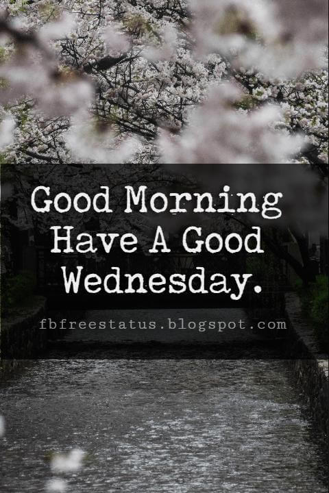 Happy Wednesday Pictures, Good Morning Have A Good Wednesday.