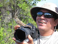 Harry Jimenez with Fly Catcher Bird in  Galapagos Islands