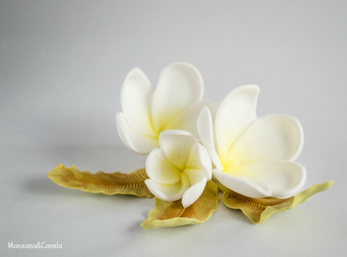 Como Hacer Flores con Fondant