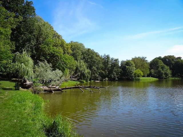 Park Skaryszewski, lato, piękne, zdjęcia, fotografia, 2016