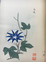 blue and white morning glory print