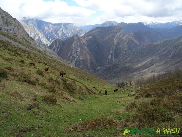 Ruta al Carriá: Descenso por zona alta de Vallesotu