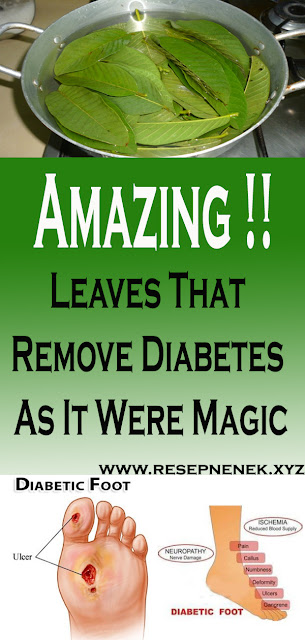 Leaves That Remove Diabetes As It Were Magic