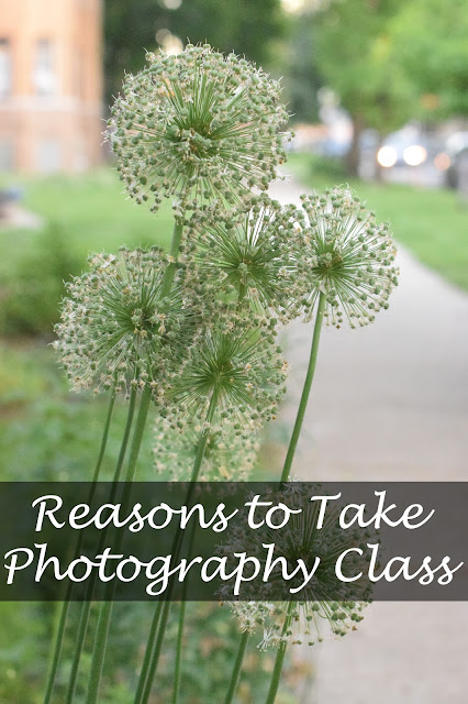 Reasons to Take Photography Class