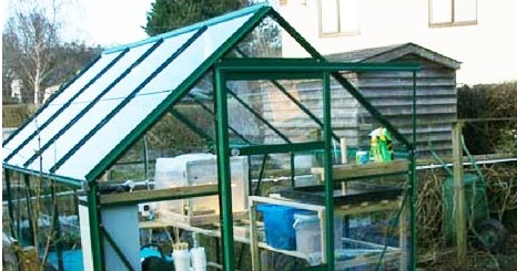 How to Build a Greenhouse Base in a Day - Floriculture Care - House Plants