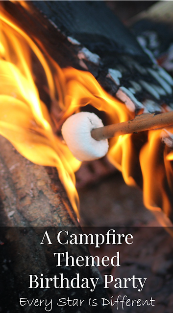 A Campfire Themed Birthday Party