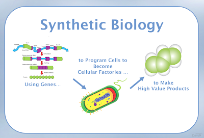 The Tomorrow Project : Conversations about Synthetic Biology