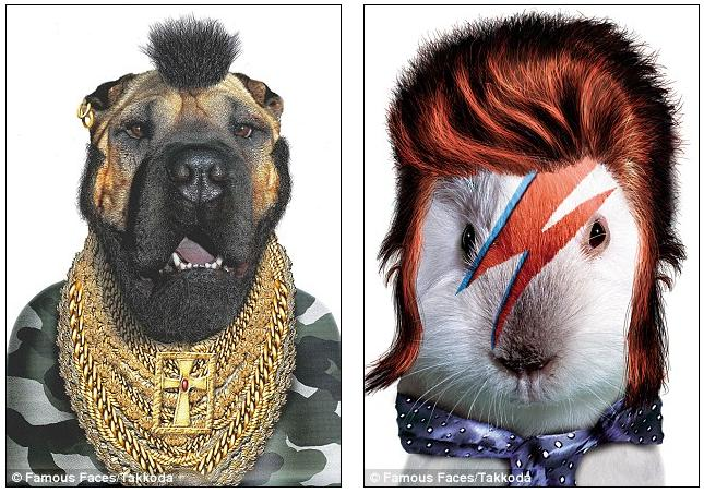 Celebrity pawtraits: The Johnny Depp Cat, A-Team dog and a