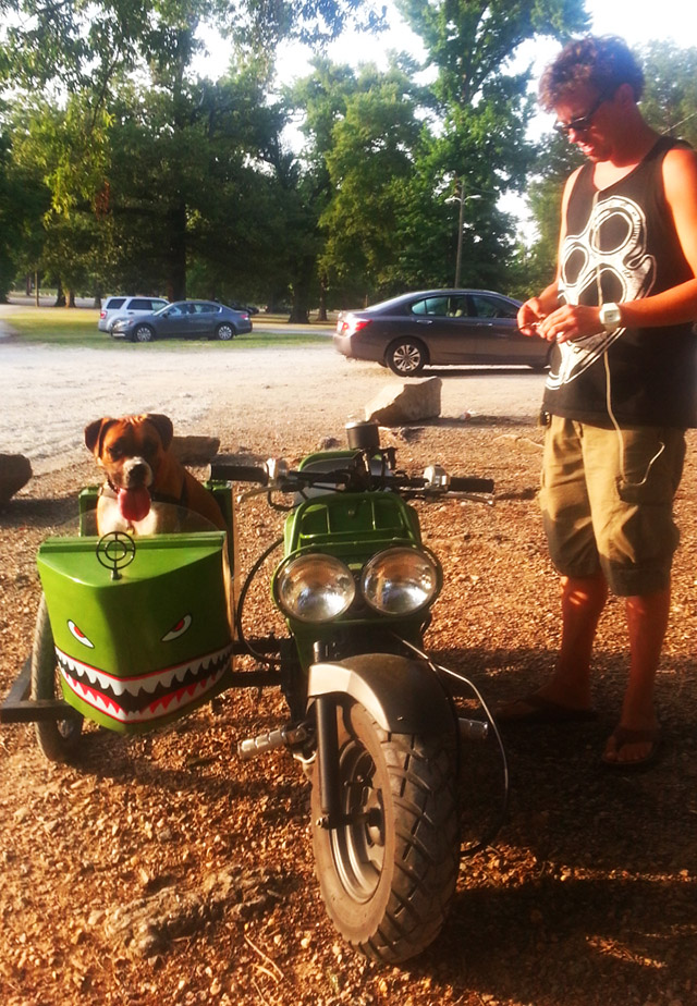 Rukus Sidecar Dog