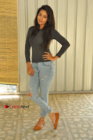 Actress Bhanu Tripathri Pos in Ripped Jeans at Iddari Madhya 18 Movie Pressmeet  0017.JPG