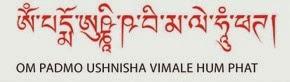 healbymantra: Wish Fulfilling Mantra & Negative Karma