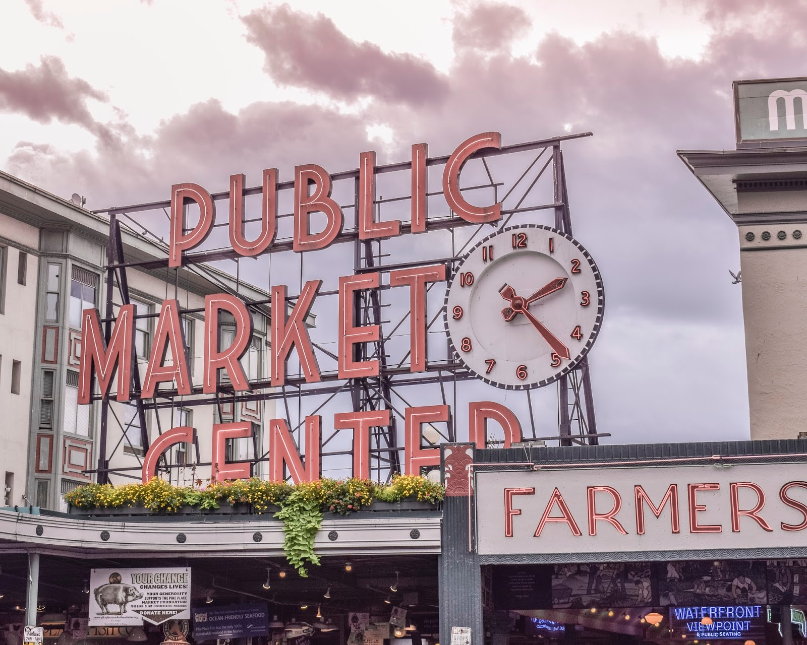 24 Hours in Seattle – What to Do
