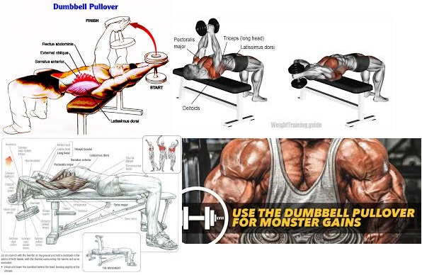 Dumbbell Pullovers (A Forgotten Exercise That Can Add Inches Of Solid Mass To Your Chest)