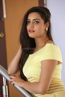 Shipra gaur in V Neck short Yellow Dress ~  018.JPG
