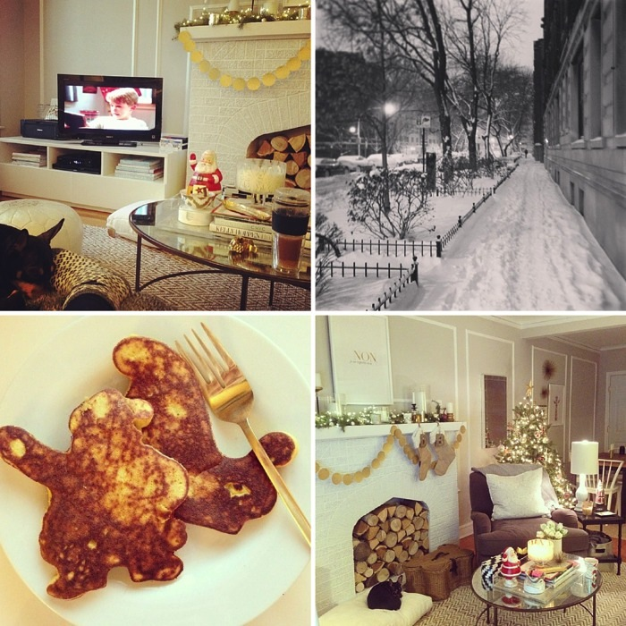 Ravacholle Lifestyle Blog |  Danielle Moss does Christmas, Chicago