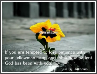 Funny Wallpapers Patience Quotes Patience Quotes Funny Patience Quote
