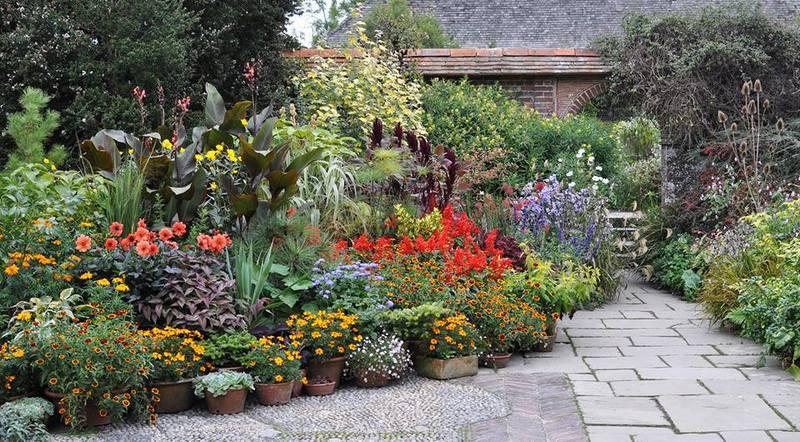Agrupacion de plantas en macetas en jardines de Great Dixter