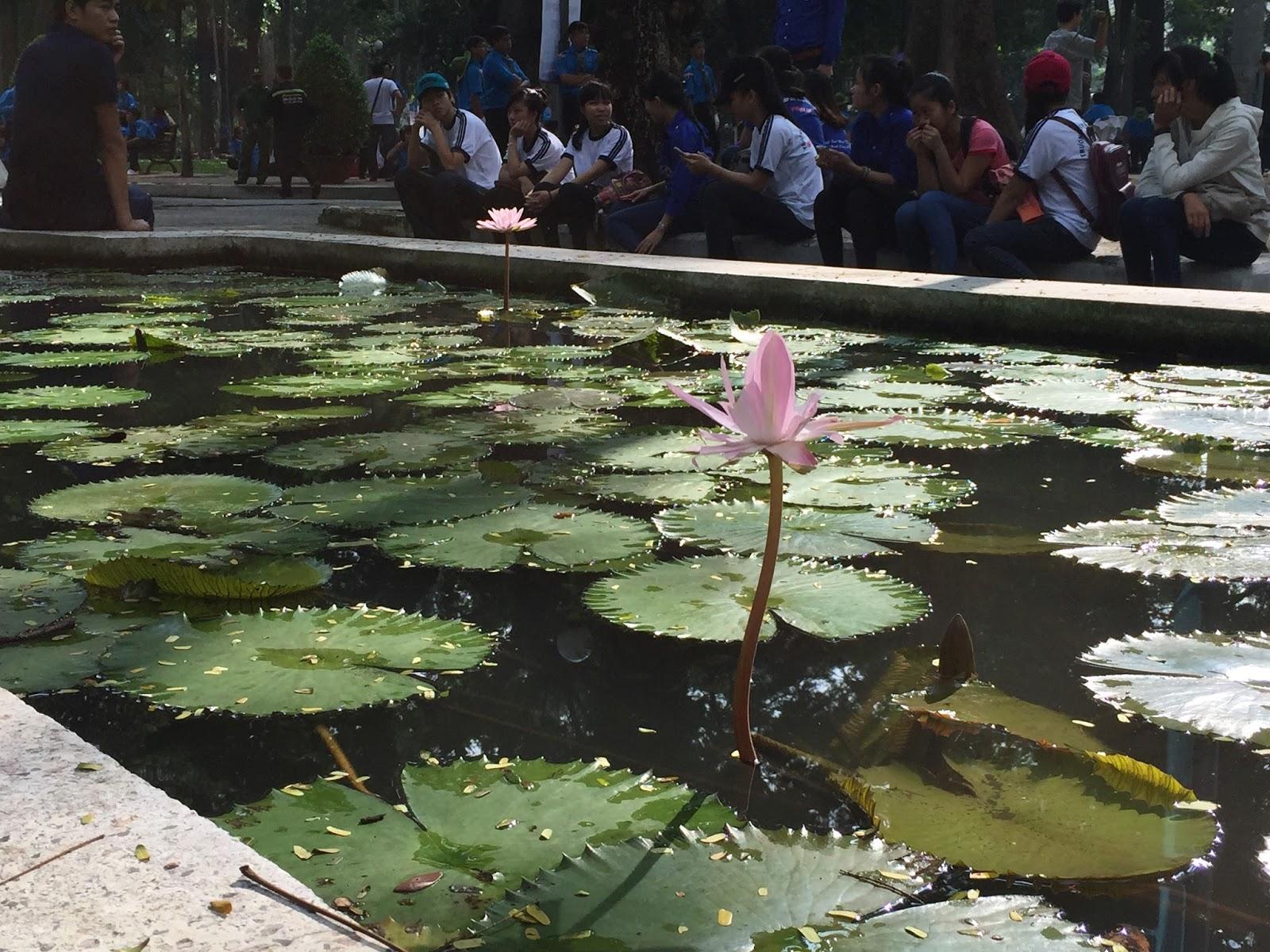 hcmc-vietnam-park ベトナムの公園2